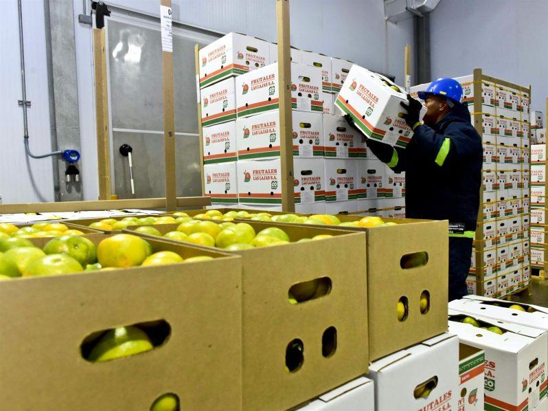 Puerto de Cartagena Implementa proceso Cold Treatment que permite primera exportación de naranjas